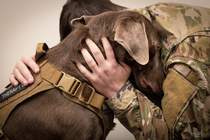 8 Ways to Bond with Your Dog