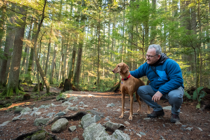 6 Activities to do with Your Dog While on a Walk