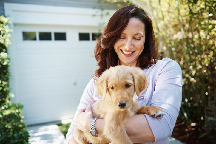 Bringing Your Dog Home from the Breeder or Adoption Center
