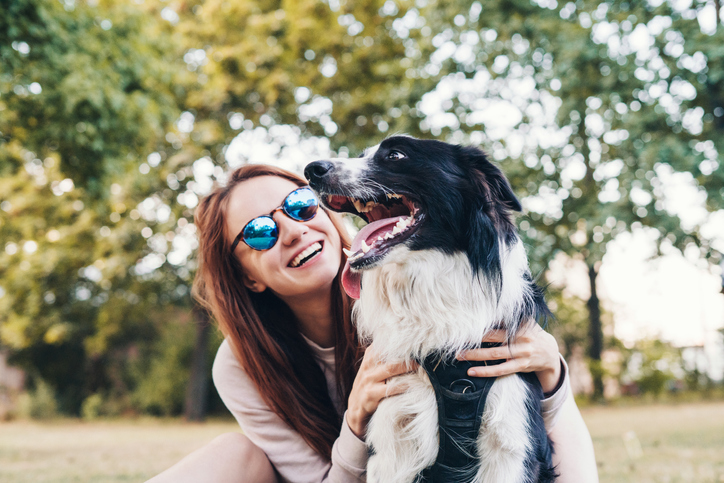 How to Plan the Perfect Day Out with Your Dog